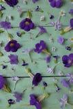 Kwiaty na stole Zdjęcia Stock