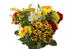 Kwiaty nad bielem Obrazy Stock