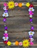 Kwiaty obramiają na drewnie zdjęcie royalty free