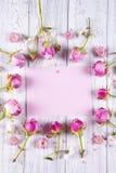 kwiaty obramiają wiosna ilustracyjnego wektor Zdjęcie Royalty Free