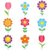 kwiaty odłogowania ilustracji