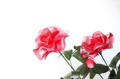 kwiaty odizolowywający Zdjęcia Stock