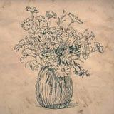 kwiaty odizolowywający puszkują biel Fotografia Stock