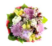 kwiaty odizolowywali Obraz Stock