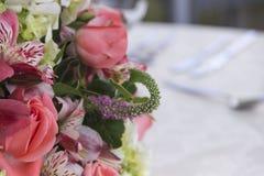 kwiaty ornamentacyjnego Fotografia Royalty Free
