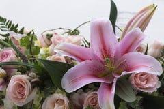 kwiaty ornamentacyjnego Obrazy Royalty Free