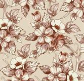 Kwiaty. Piękny tło z kwiatem. Fotografia Stock