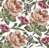 Kwiaty. Piękny tło z kwiatem. Zdjęcia Royalty Free
