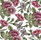 Kwiaty. Piękny tło z kwiaty. Obrazy Royalty Free