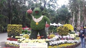 Kwiaty Powystawowi w Taipei Fotografia Royalty Free