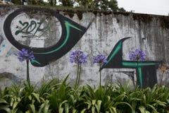 Kwiaty przed graffiti sztuką Zdjęcia Stock