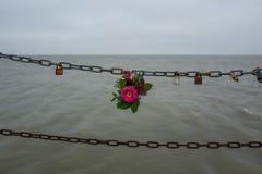 Kwiaty przy łańcuchem w Wilhelmshaven Fotografia Royalty Free