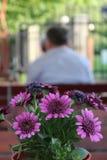 Kwiaty przy restauracja stołem Fotografia Royalty Free