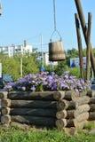 Kwiaty przy starym well Zdjęcie Stock