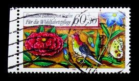 Kwiaty, ptak i motyl, opieka społeczna: Granicy Średniowieczny Modlitewnej książki seria około 1985, Zdjęcie Stock