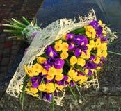 Kwiaty, purpurowi irysy i żółte chryzantemy, Zdjęcia Royalty Free