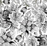 Kwiaty. Róże. Piękny tło. Obraz Royalty Free