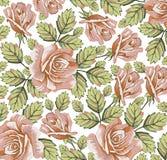 Kwiaty. Róże. Piękny tło. Zdjęcie Stock