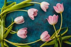 kwiaty różowią tulipany obrazy stock