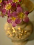 kwiaty różowią wazę Zdjęcia Royalty Free