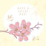 Kwiaty rozgałęziają się pięknego Zdjęcie Royalty Free
