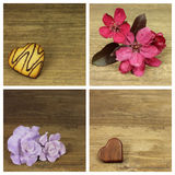 kwiaty serca Fotografia Stock