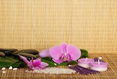 Kwiaty set dla zdroju i orchidea zdjęcie royalty free
