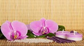 Kwiaty set dla zdroju i orchidea Obrazy Stock