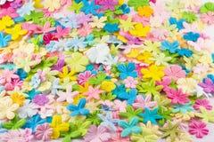 kwiaty tła wiosny fotografia royalty free