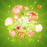 kwiaty tło Zdjęcia Royalty Free