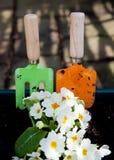 kwiaty target3882_1_ narzędzia Zdjęcia Royalty Free