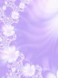 kwiaty tło Zdjęcia Stock