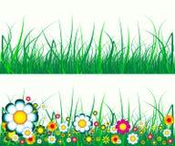 kwiaty trawy Zdjęcie Stock
