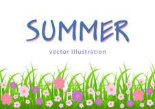 Kwiaty, trawy granica, lato ilustracja, kartka z pozdrowieniami, pokrywa, plakat, sztandar z różowymi łąka kwiatami i zieleń, Fotografia Stock