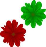 kwiaty tropikalnego Fotografia Royalty Free
