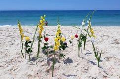 Kwiaty umieszczają jako ofiary fotografia royalty free
