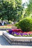 kwiaty uprawiają ogródek hipodromu Istanbul parka Zdjęcie Stock