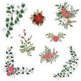 kwiaty ustawiają ilustracji