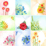 kwiaty ustawiają akwarelę Obrazy Royalty Free