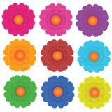 Kwiaty ustawiający Obraz Stock