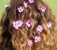 Kwiaty w dziewczyna włosy Obrazy Stock