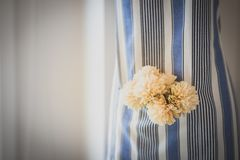 Kwiaty w fartuch kieszeni fotografia royalty free