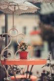 Kwiaty w garnku na stole w kawiarnia barze Uliczna powierzchowność Zdjęcie Stock