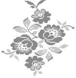 Kwiaty w kwadratach Obrazy Royalty Free