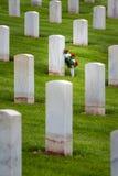Kwiaty w militarnym cmentarzu Obrazy Royalty Free