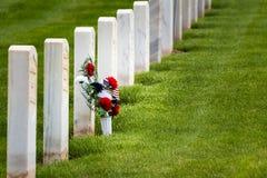 Kwiaty w militarnym cmentarzu Obrazy Stock