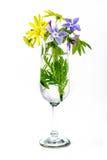 kwiaty w wazowym szampańskim flecie Zdjęcia Stock