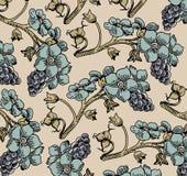 Kwiaty. Winogrona. Piękny tło od liści. Zdjęcie Stock