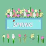 Kwiaty wiosna ilustracja wektor
