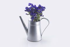 Kwiaty wkładający w czajniku Zdjęcia Stock